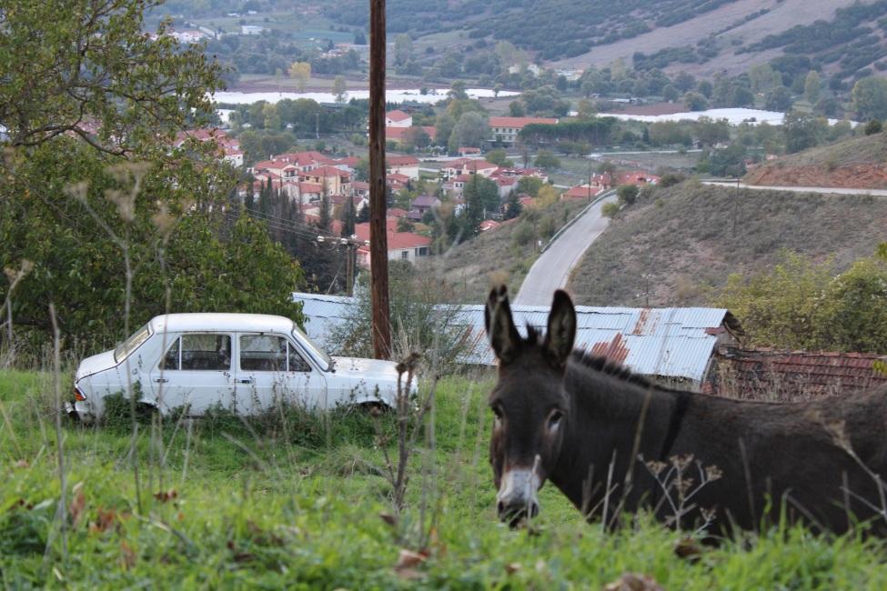 Auf dem Bild sieht man in der rechten Bildecke einen Esel, links ein weißes Auto. Im Hintergrund eine Berglandschaft