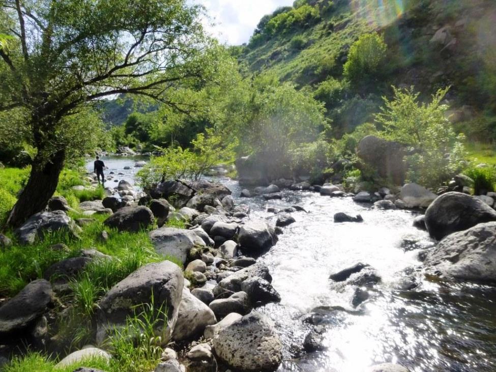 Fluss in Armenien, grüne Sträucher, Bäume  und Felsen umsäumen den reißenden Fluss